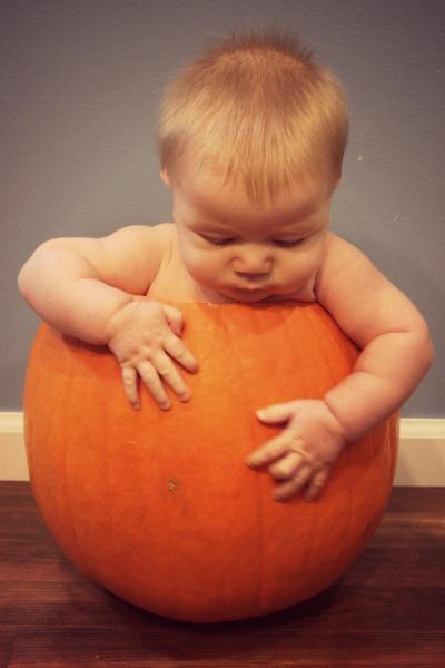 H Pumpkin