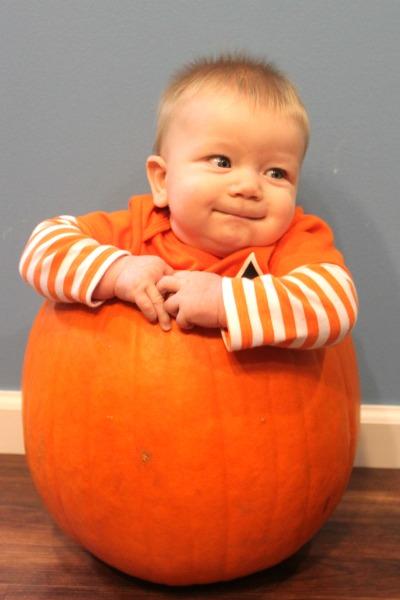 Harrison Pumpkin