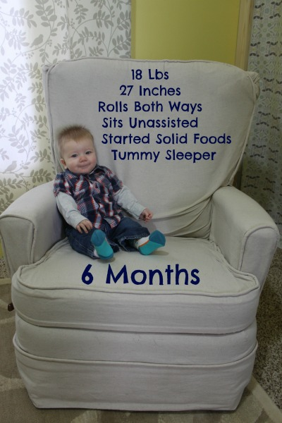 6 Month Harrison