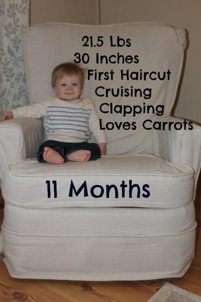 11 Month Statistics